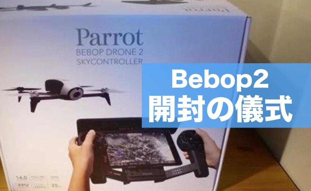 parrot-bebop2-henkou00