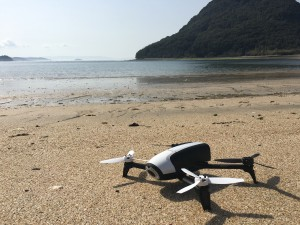 parrot-bebop2-point