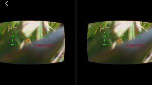 parrot-disco-testflyte14